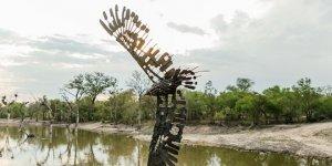 Adventure Tourism – Cheetah Plains Game Lodge in Sabi Sands Game Reserve